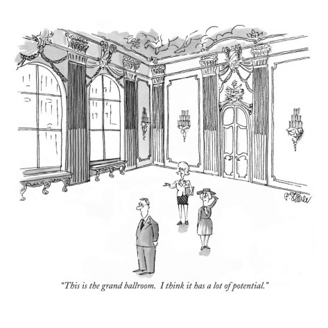 peter-steiner-this-is-the-grand-ballroom-i-think-it-has-a-lot-of-potential-new-yorker-cartoon