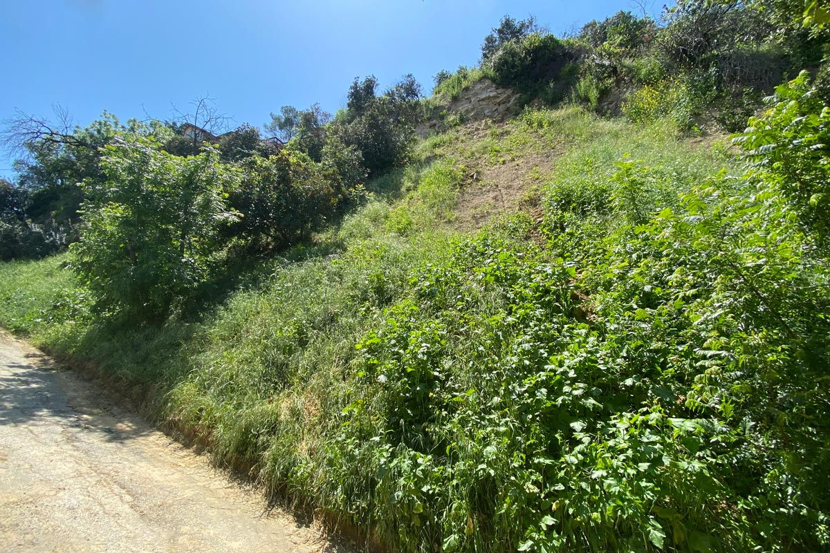 257 Furness Ave Highland Park Land for Sale Tracy Do Compass